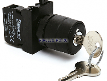 Кнопки с ключом EMAS 22 мм серии CP IP65