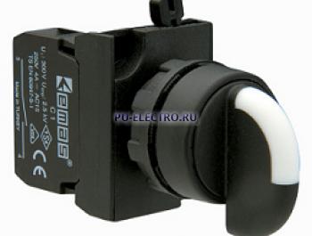 Переключатели EMAS 22 мм серии CP IP65